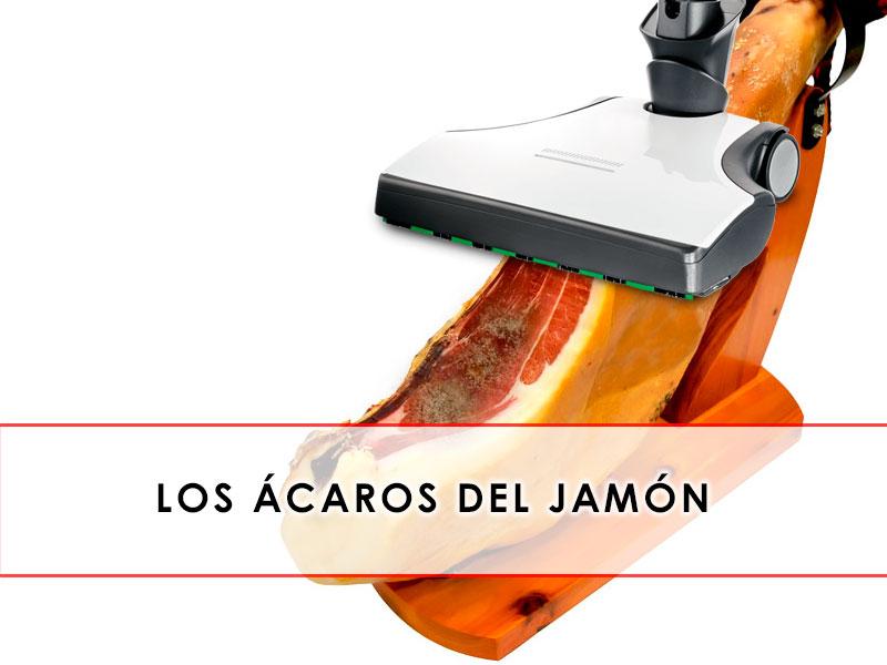 Ácaros del jamón