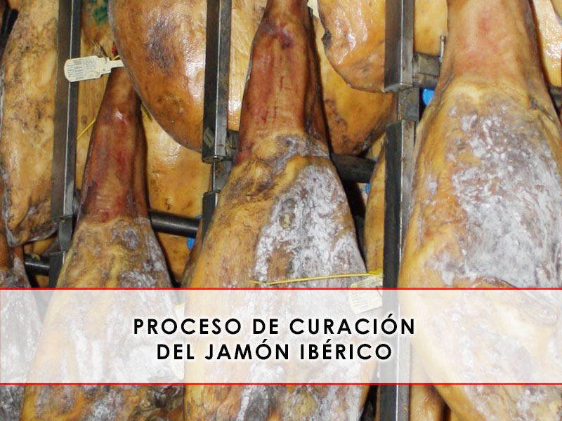 Proceso de curación del jamón ibérico
