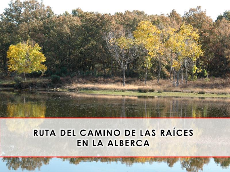 Ruta del Camino de las Raíces en La Alberca