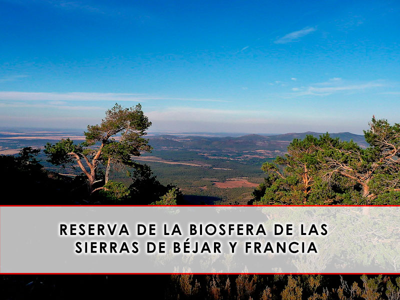 Además de ser una localidad preciosa, La Albera se encuentra ubicada dentro de la Reserva de la Biosfera de las Sierras de Béjar y de Francia. Si queréis saber más sobre todo lo que ofrece esta zona protegida, no os perdáis este post. https://espaciodeljamon.com/reserva-de-la-biosfera-de-la-sierra-de-francia/